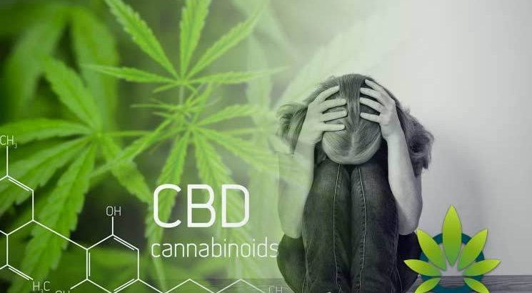 CBD-on-Distinctive-Mental-Health-Disorders